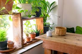 5 beautiful ways to incorporate live plants into your decor redfin