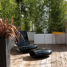 Creating Privacy In Your Backyard Home Dzine Garden Establish Some Privacy In Your Garden