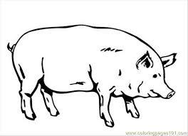 Pig Coloring Page Coloring Page Free Pig Coloring Pages Pig Coloring Pages