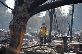 Wildfire Deaths Per Year by Woman Dies In Wildfires Trying To Rescue Her Dog Fox5sandiego Com