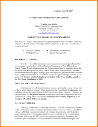 Combined Resume Sample Of A Combination Resume Hybrid Templates Word 6 Example