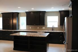 Pictures Of Black Kitchen Cabinets Black Kitchen Cabinets Traditional Kitchen Houston By
