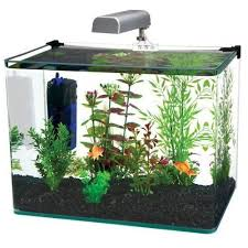 53 best fish tanks accessories images on fish tanks
