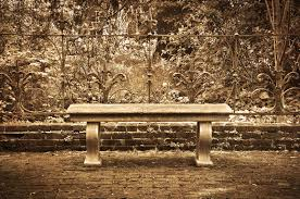 old bench in formal english garden with sepia tone effect stock