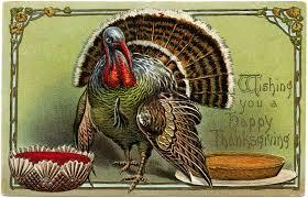 thanksgiving turkey postcard digital design shop