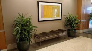 Interior Designers Milwaukee by Plant Design Milwaukee Wi Interior Landscaping Milwaukee