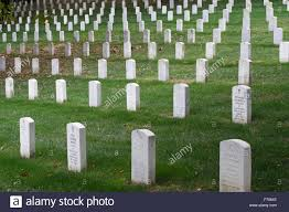 pictures of tombstones rows of tombstones at arlington national cemetery arlington county