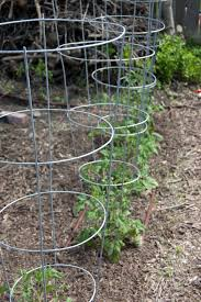 dream wood design more how to build wood tomato cages