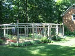 vegetable garden fences houzz