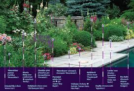 25 robust summer bloomers fine gardening
