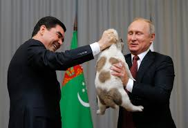 putin s puppy russia s loving leader gets a gift wlos