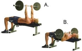 Muscles Used During Bench Press Close Grip Bench Press For Tricep Workout Build Muscle 101