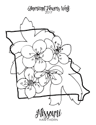 california state flag coloring page coloring pages 50 states 50 states free coloring pages on art