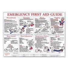 emergency first aid guide poster by labelmaster lmthps128e