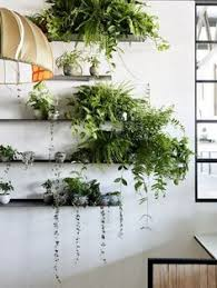 Plant Lights How To Choose by Benefits Of Houseplants And How To Choose One Plants Room And