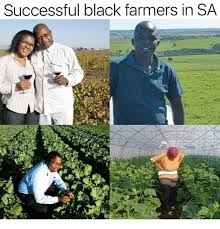 Successful Black Meme - successful black farmers in sa meme on conservative memes