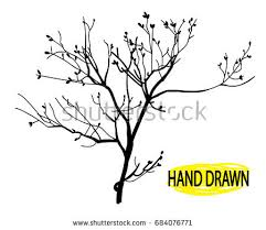 branch stock images royalty free images u0026 vectors shutterstock