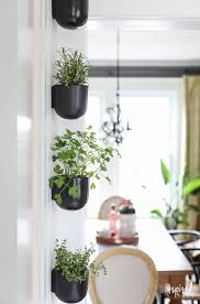 ikea hanging plant holder hanging herb garden amazon wall herb