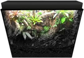 neherp vivarium builder 36x18x24 enclosure