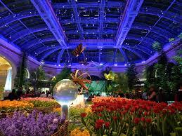 Botanical Gardens Bellagio by Panoramio Photo Of Botanical Garden Inside The Bellagio Las Vegas