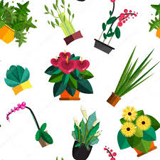 seamless pattern of houseplants indoor and office plants in pot