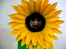 sunflower farida youtube
