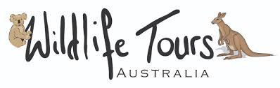 wildlife tours images Wildlife tours australia 25 reviews on tourradar png