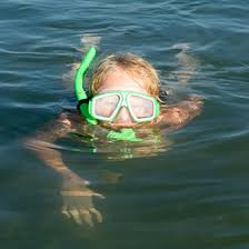 Florida snorkeling images Where to go snorkeling in florida usa today jpg