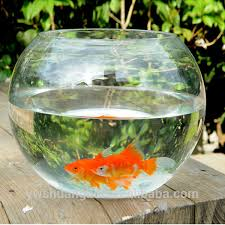 Goldfish In A Vase Fish Bowl Fish Bowl Suppliers And Manufacturers At Alibaba Com