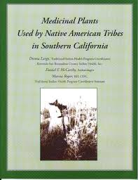 native american edible plants medicinal plants used by native american tribes in southern
