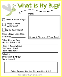25 unique insects for kids ideas on pinterest bug crafts bug
