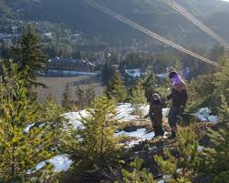 Hydro Christmas Tree Stand - free christmas trees in whistler street sand peaks