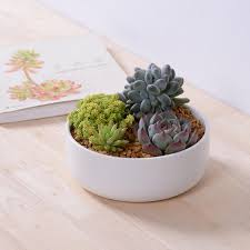 indoor planter interesting cute droplets ceramics by hbsch etsy
