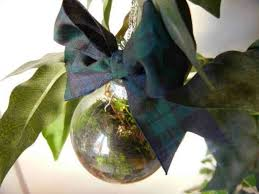 how to make a hanging terrarium ornament diy projects craft ideas