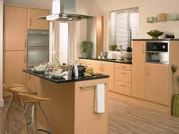 Replace Kitchen Cabinet by Replace Kitchen Cabinet Doors Creative Information About Home