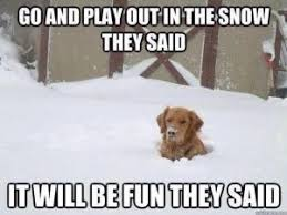 Memes About Winter - funny winter memes