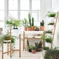 indoor designer planter pots melbourne tall plant pots indoor