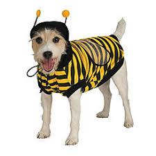 Bumblebee Halloween Costumes Pet Costumes Pet Halloween Costumes Sears