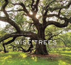 wise trees npr