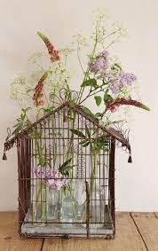 Decorative Bird Cages For Centerpieces by 138 Best Bird Cages But Not For The Birds Images On Pinterest