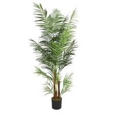 silk areca palm tree 7 silk areca trees silk palm trees make