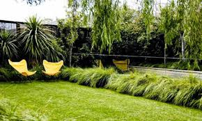 small garden with butterfly chairs and ornamental grasses ideas