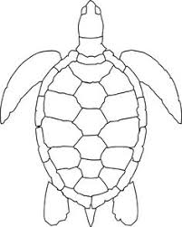 sea turtle coloring turtles category select 25935