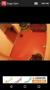 live camera viewer for ip cams 1 5 for android download