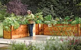 Raised Bed Vegetable Garden Design by Decor U0026 Tips Outdoor Design With Raised Vegetable Beds And Lawn