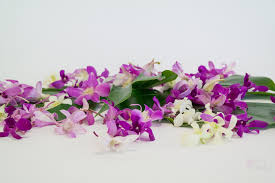 Orchid Flower Pic - hawaiian flowers leis hawaiian gift baskets loose orchid blooms