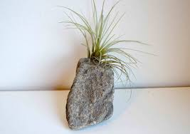 Polymer Clay Vases How To Make Stone Air Plant Holders With Polymer Clay Youtube