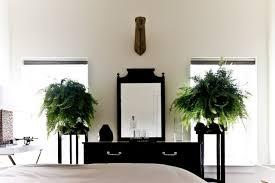plante dans chambre une vraie oasis chez vous grâce aux plantes d intérieur