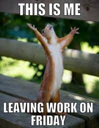 Leaving Work On Friday Meme - this is me leaving work on friday cat lifepoint church