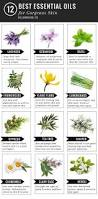 Essential Oils For Hair Loss 12 Best Essential Oils For Skin Helloglow Co